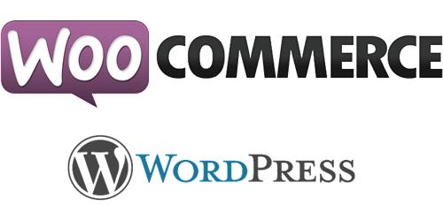 curso presencial wordpress y woocommerce en pamplona